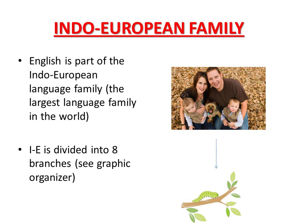 INDO-EUROPEAN FAMILY English is part of the Indo-European language family (the largest language family in the world)