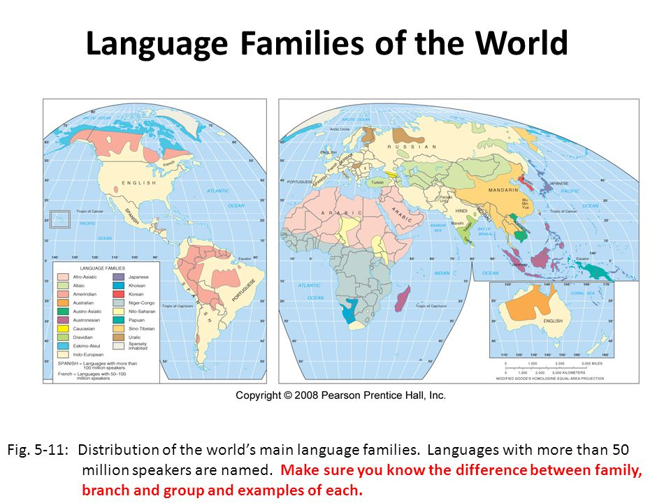 Language Families of the World