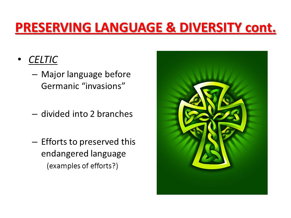 PRESERVING LANGUAGE & DIVERSITY cont.