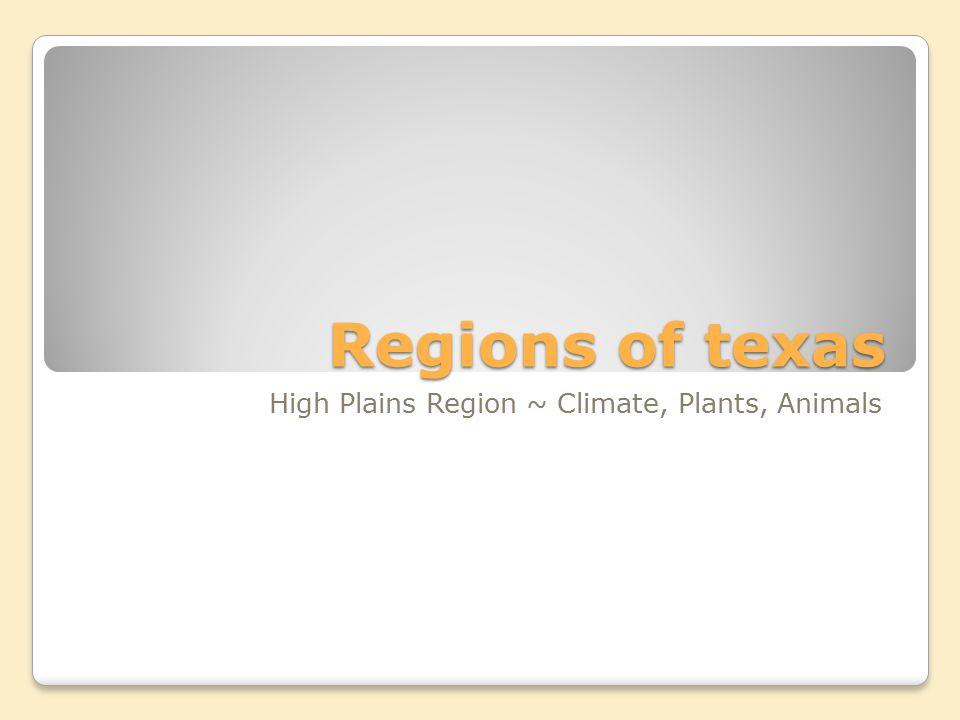 High Plains Region ~ Climate, Plants, Animals
