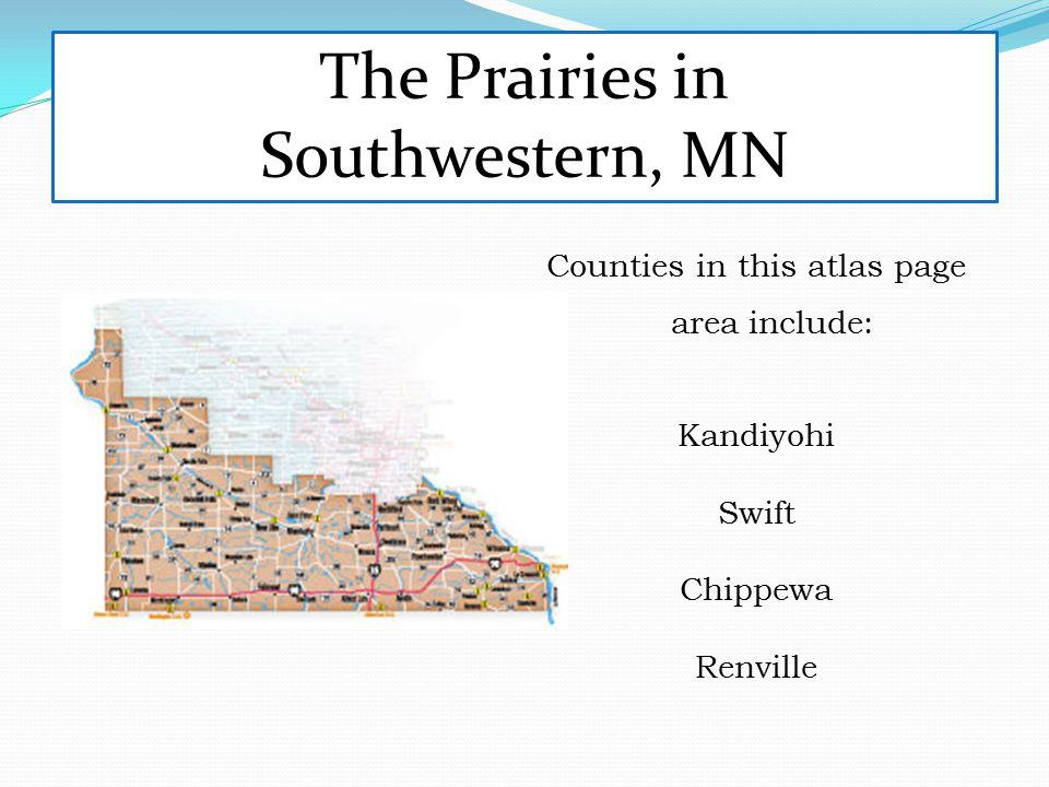 The Prairies in Southwestern, MN