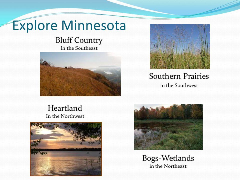 Bogs-Wetlands in the Northeast