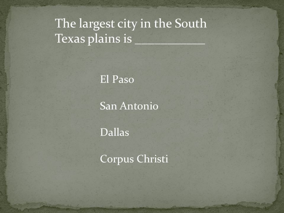 The largest city in the South Texas plains is ___________