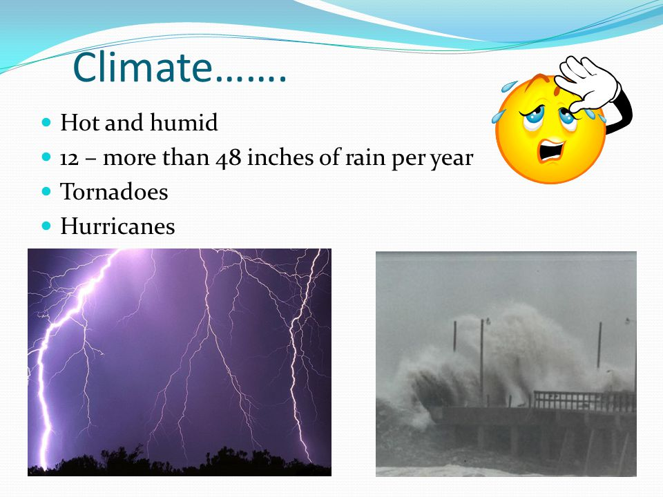 Climate……. Hot and humid 12 – more than 48 inches of rain per year