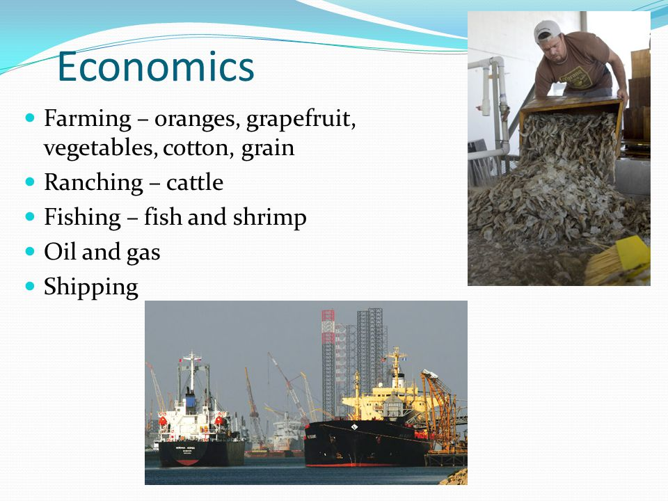 Economics Farming – oranges, grapefruit, vegetables, cotton, grain