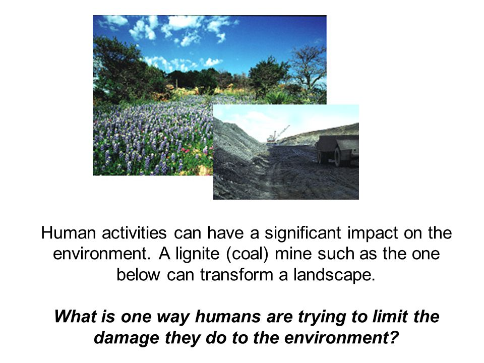 Human activities can have a significant impact on the environment