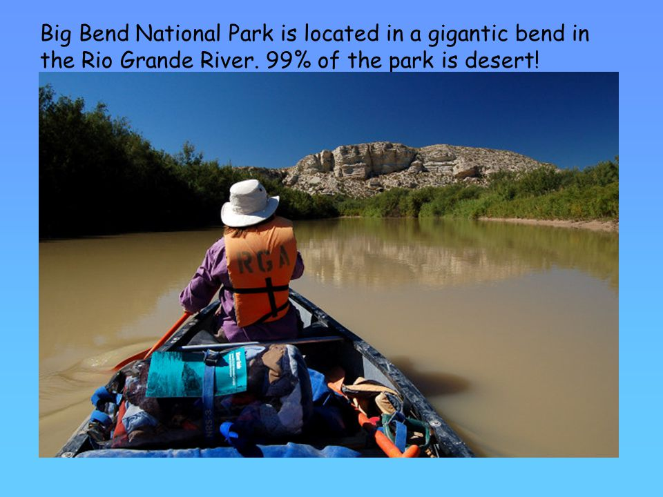 Big Bend National Park is located in a gigantic bend in the Rio Grande River.