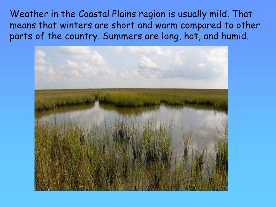 Weather in the Coastal Plains region is usually mild