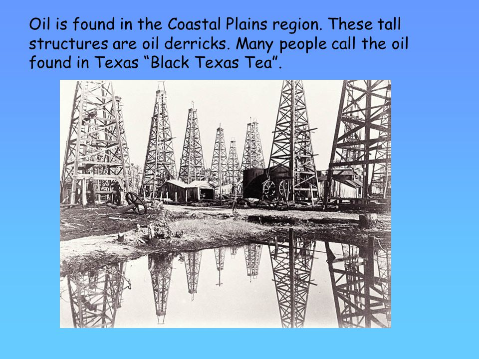 Oil is found in the Coastal Plains region