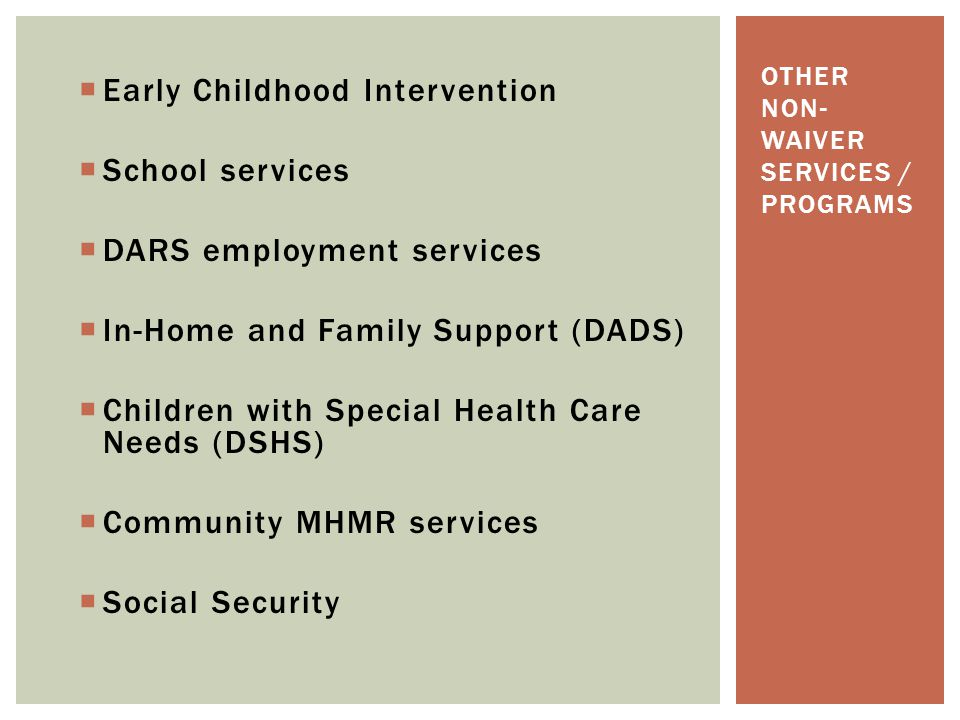 Other non-waiver services / programs