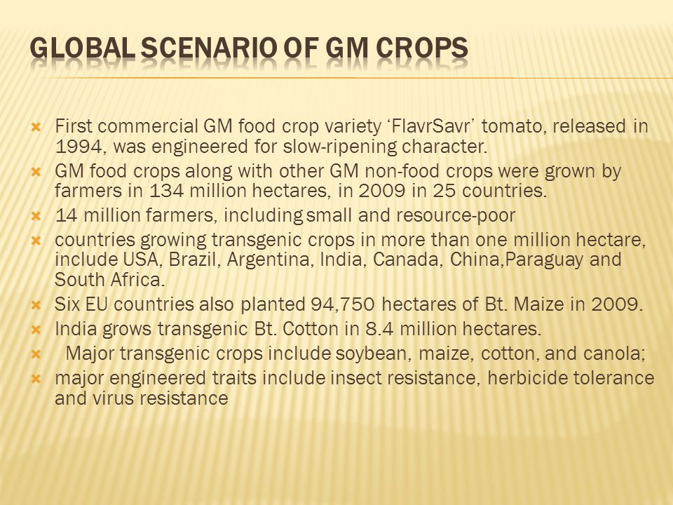 Global Scenario of GM Crops