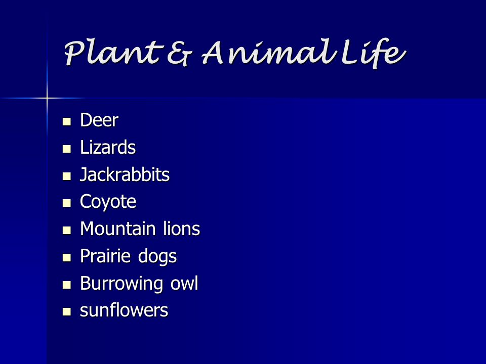 Plant & Animal Life Deer Lizards Jackrabbits Coyote Mountain lions