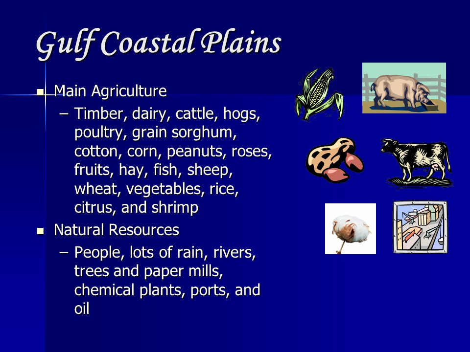 Gulf Coastal Plains Main Agriculture
