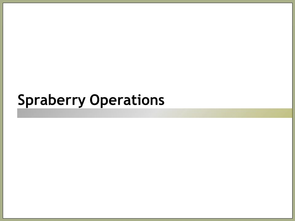 Spraberry Operations