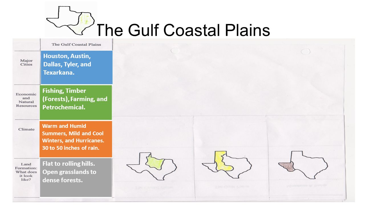 The Gulf Coastal Plains