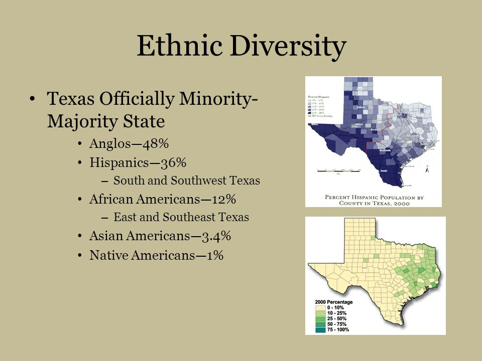Ethnic Diversity Texas Officially Minority-Majority State Anglos—48%