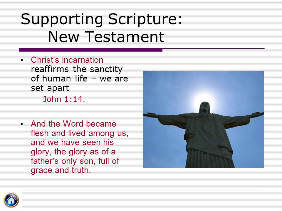 Supporting Scripture: New Testament