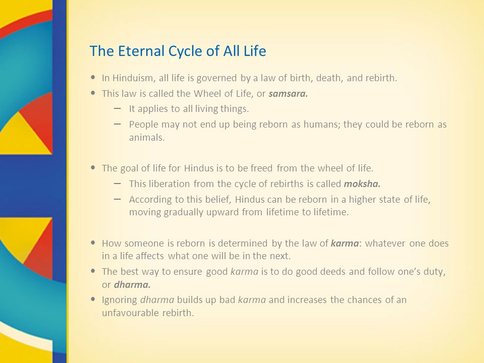 The Eternal Cycle of All Life