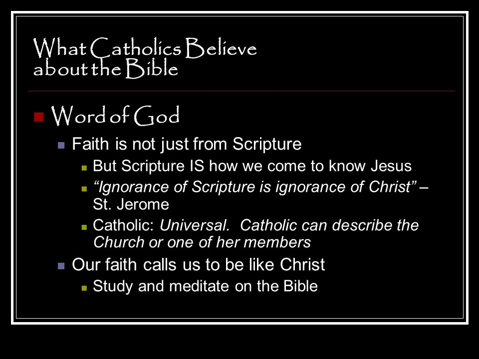 What Catholics Believe about the Bible