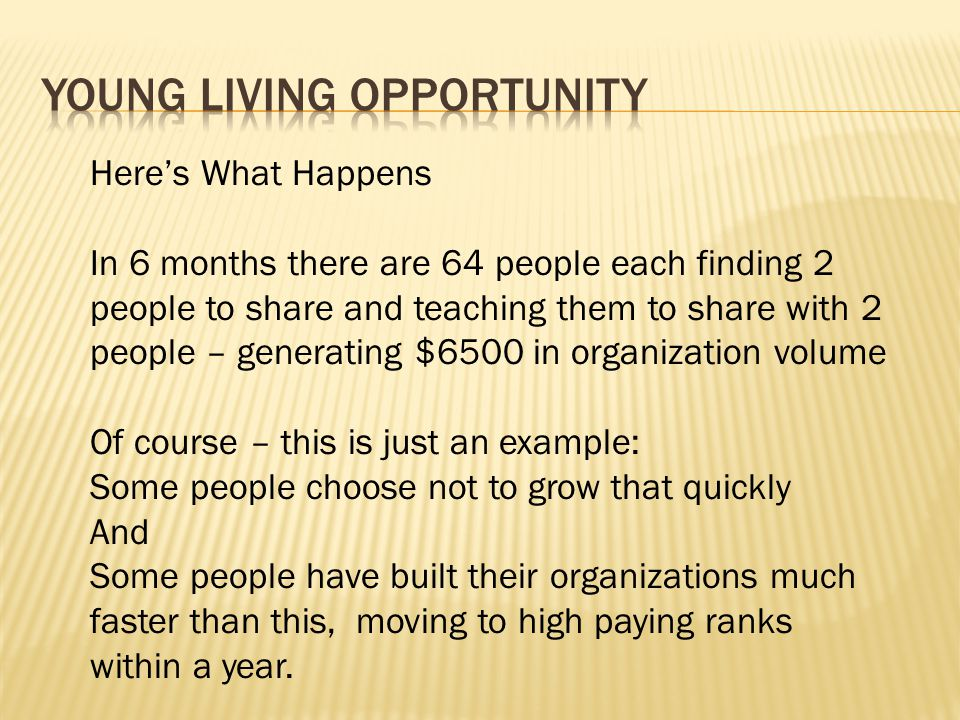 Young Living Opportunity