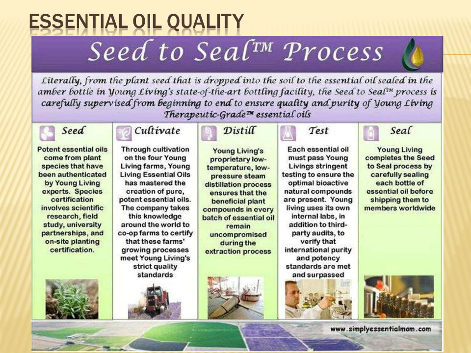 Essential Oil Quality