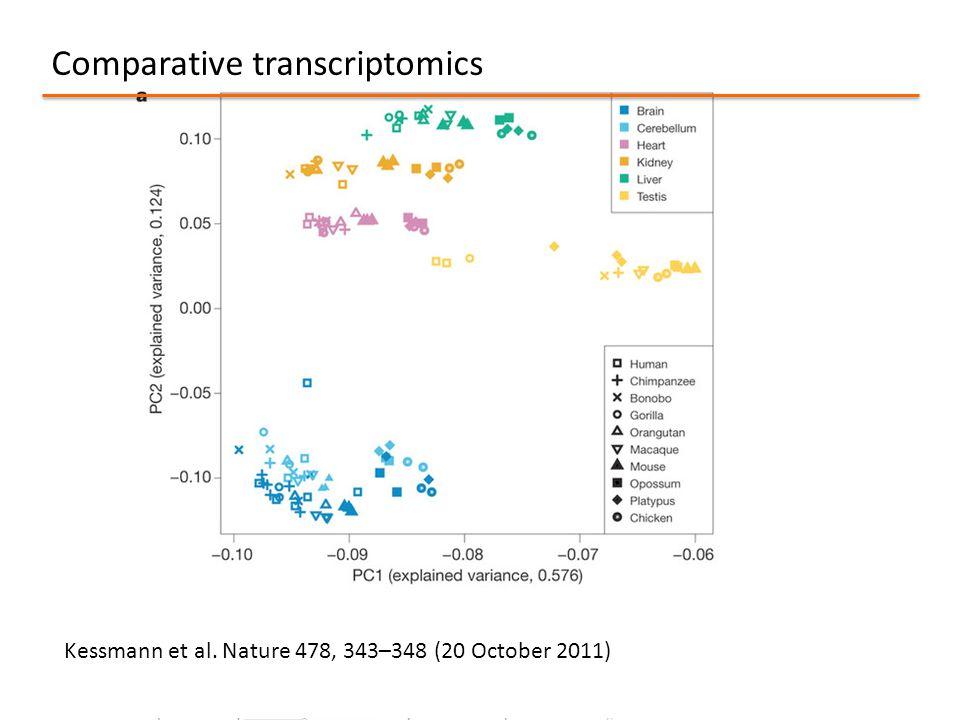 Comparative transcriptomics