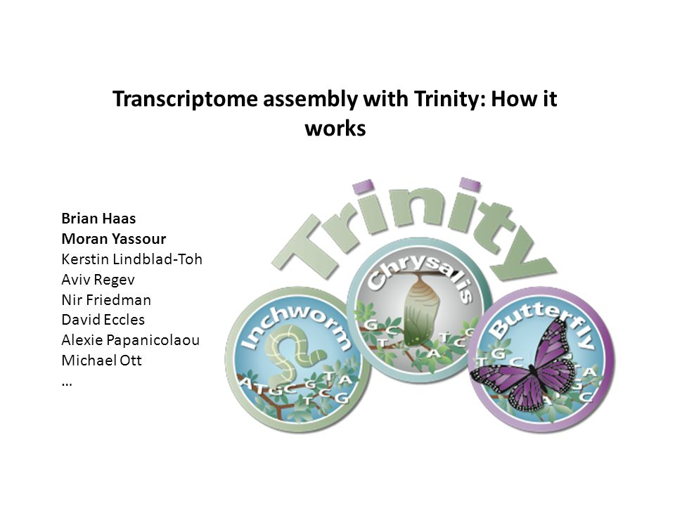 Transcriptome assembly with Trinity: How it works