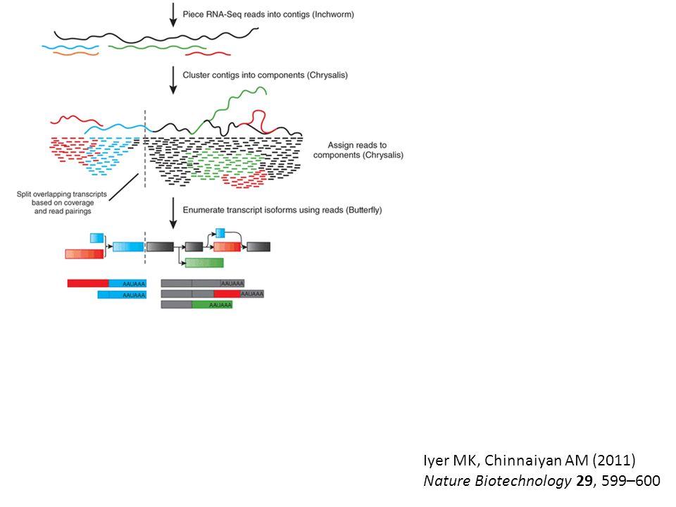 Iyer MK, Chinnaiyan AM (2011) Nature Biotechnology 29, 599–600