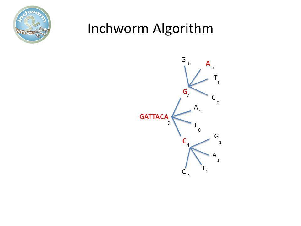 Inchworm Algorithm G A G A GATTACA T C 5 4 1 9 4