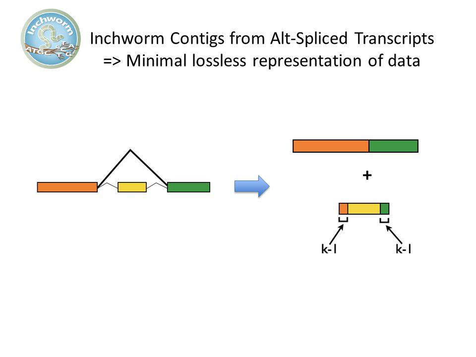 Inchworm Contigs from Alt-Spliced Transcripts => Minimal lossless representation of data