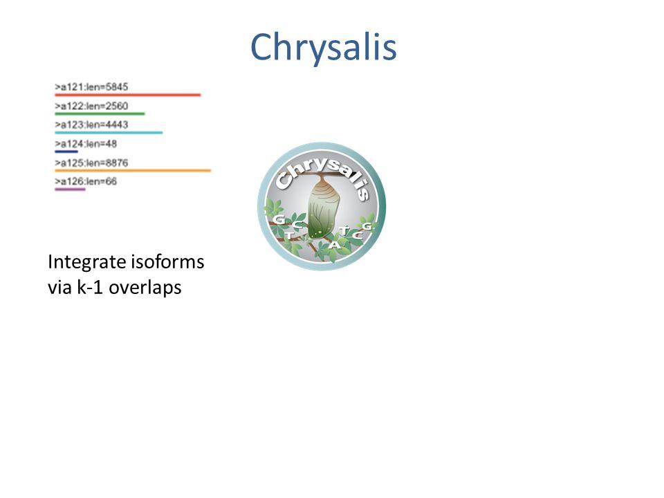 Chrysalis Integrate isoforms via k-1 overlaps