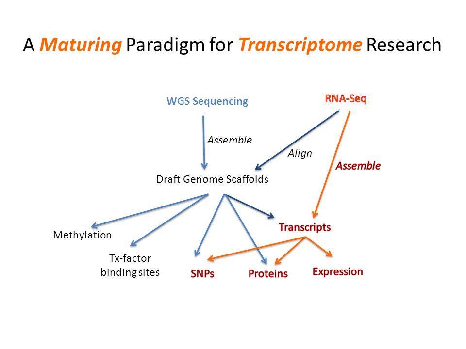 A Maturing Paradigm for Transcriptome Research