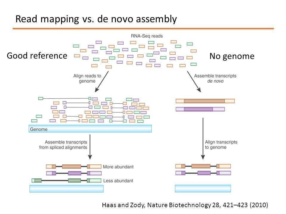 Read mapping vs. de novo assembly