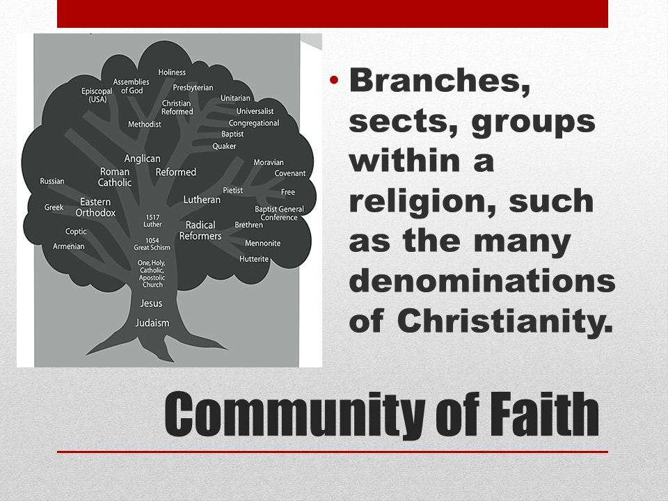 Branches, sects, groups within a religion, such as the many denominations of Christianity.