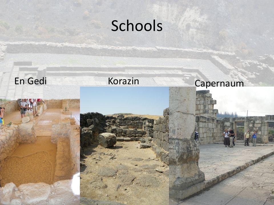 Schools En Gedi Korazin Capernaum