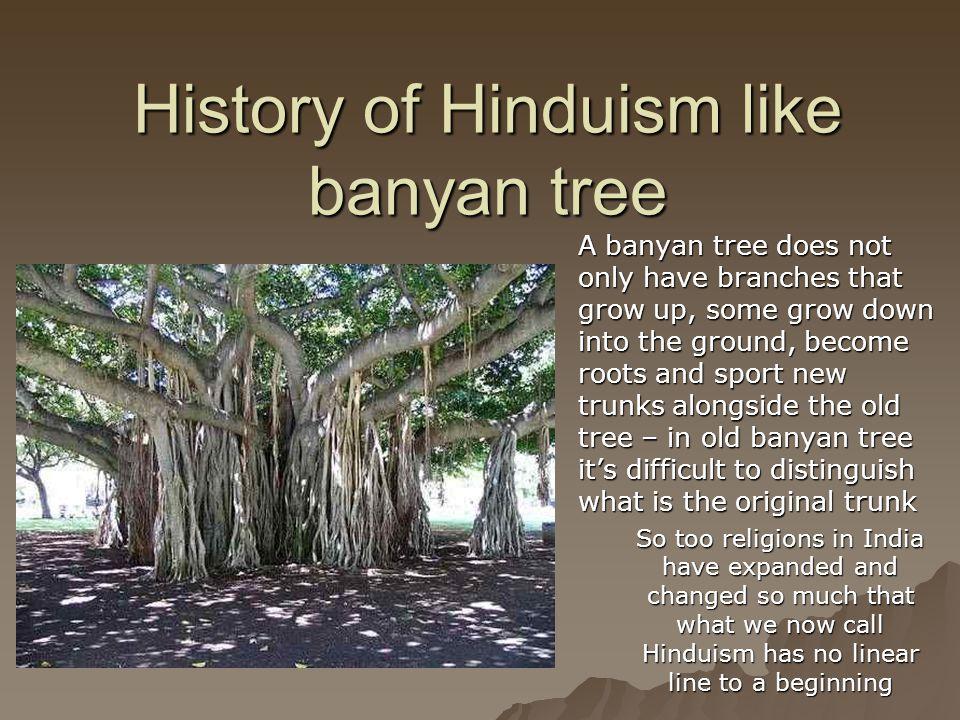 History of Hinduism like banyan tree