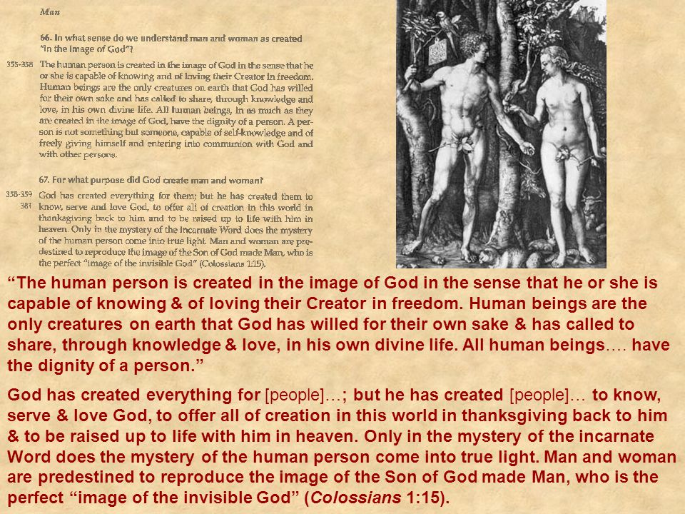 The human person is created in the image of God in the sense that he or she is capable of knowing & of loving their Creator in freedom. Human beings are the only creatures on earth that God has willed for their own sake & has called to share, through knowledge & love, in his own divine life. All human beings…. have the dignity of a person.