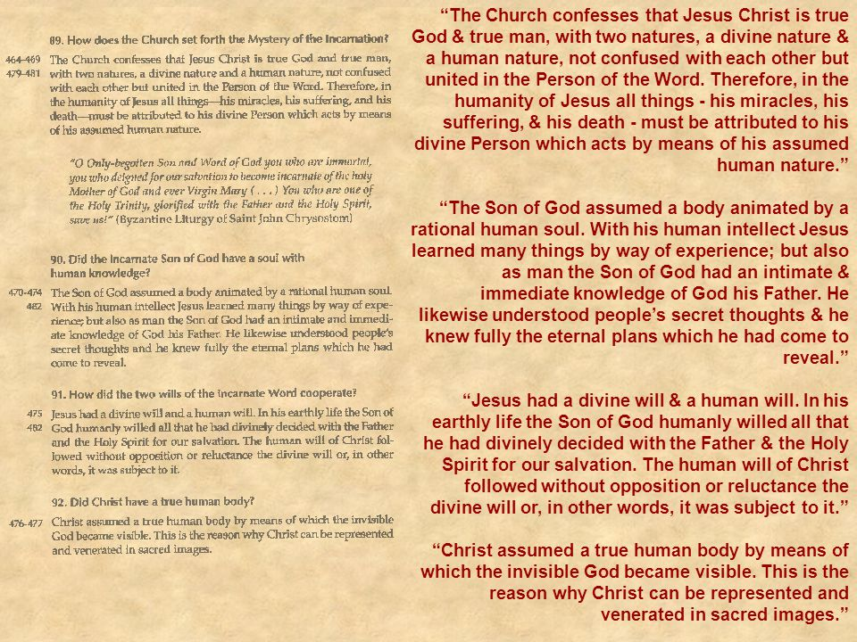 The Church confesses that Jesus Christ is true God & true man, with two natures, a divine nature & a human nature, not confused with each other but united in the Person of the Word. Therefore, in the humanity of Jesus all things - his miracles, his suffering, & his death - must be attributed to his divine Person which acts by means of his assumed human nature.