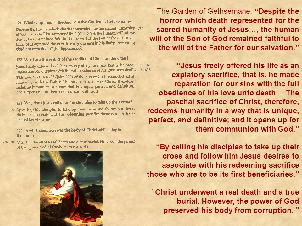 The Garden of Gethsemane: Despite the horror which death represented for the sacred humanity of Jesus…, the human will of the Son of God remained faithful to the will of the Father for our salvation.