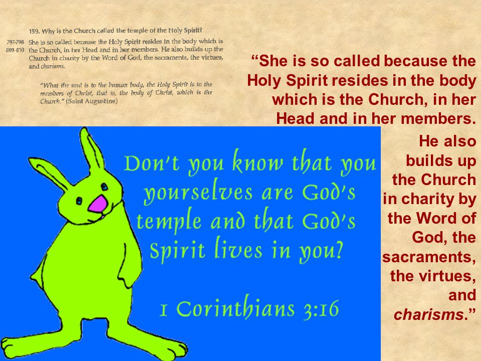 She is so called because the Holy Spirit resides in the body which is the Church, in her Head and in her members.