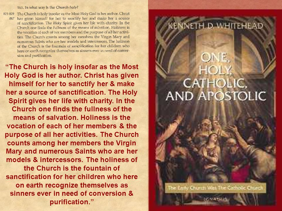 The Church is holy insofar as the Most Holy God is her author