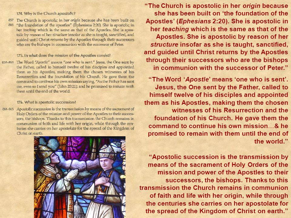 The Church is apostolic in her origin because she has been built on 'the foundation of the Apostles' (Ephesians 2:20). She is apostolic in her teaching which is the same as that of the Apostles. She is apostolic by reason of her structure insofar as she is taught, sanctified, and guided until Christ returns by the Apostles through their successors who are the bishops in communion with the successor of Peter.