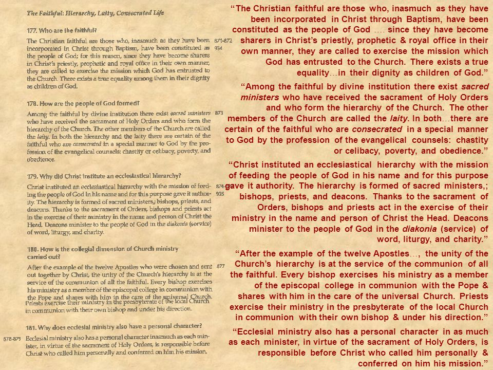The Christian faithful are those who, inasmuch as they have been incorporated in Christ through Baptism, have been constituted as the people of God …. since they have become sharers in Christ's priestly, prophetic & royal office in their own manner, they are called to exercise the mission which God has entrusted to the Church. There exists a true equality…in their dignity as children of God.