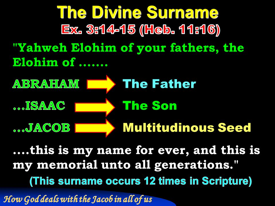 The Divine Surname Ex. 3:14-15 (Heb. 11:16)