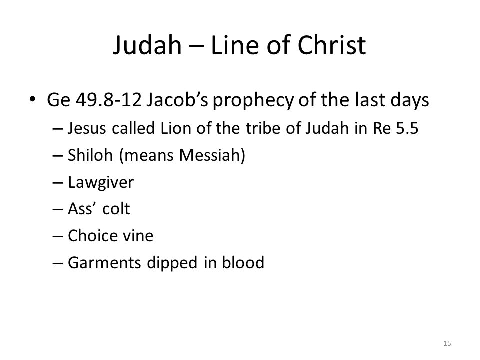 Judah – Line of Christ Ge 49.8-12 Jacob's prophecy of the last days