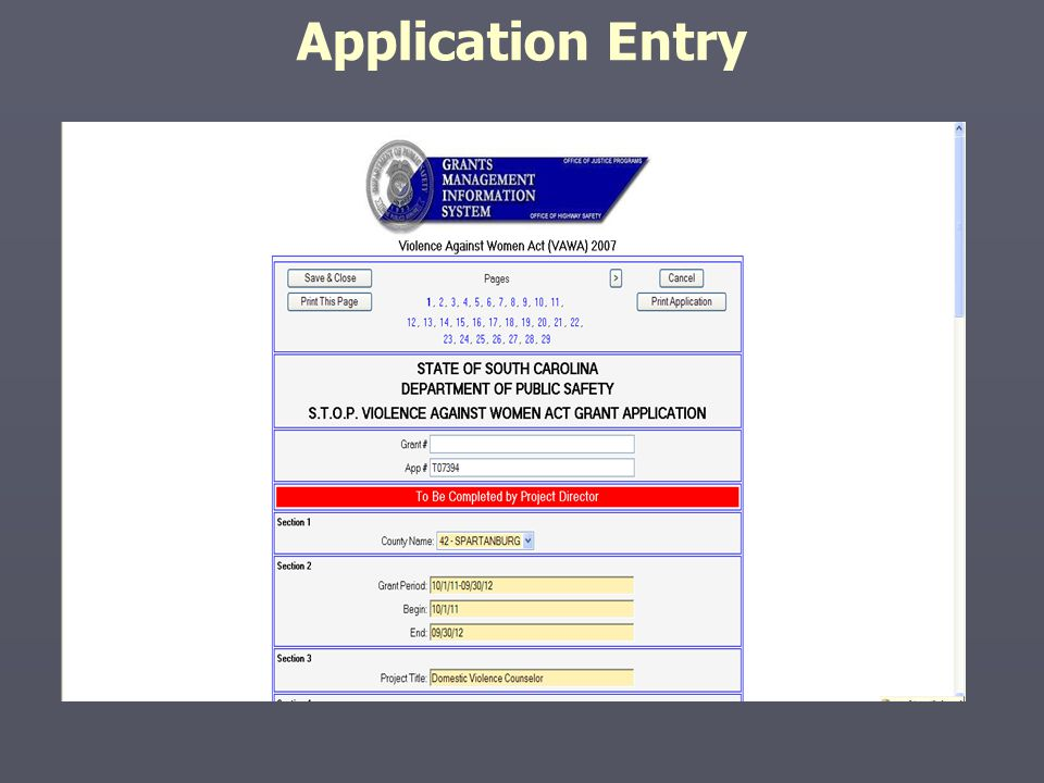 Application Entry