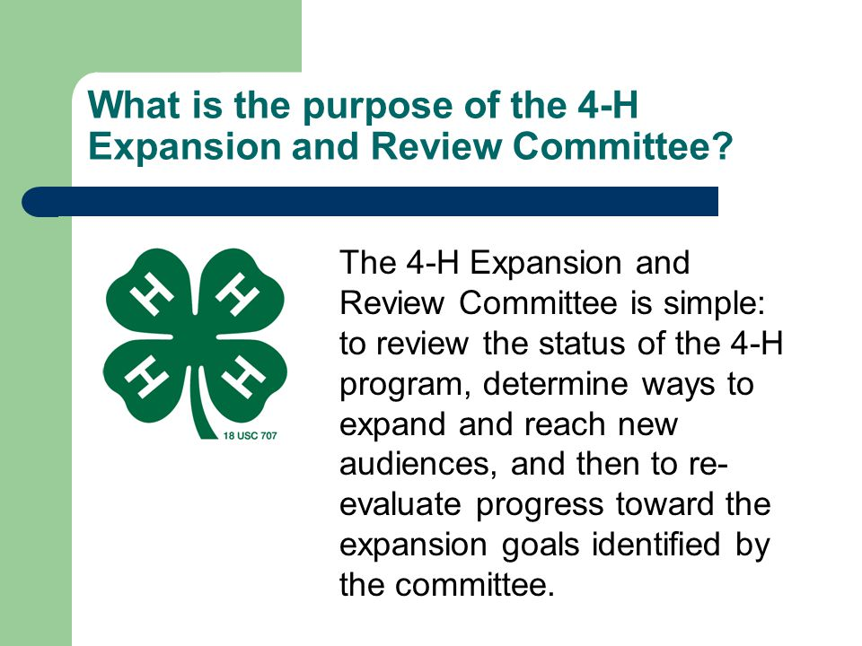 What is the purpose of the 4-H Expansion and Review Committee