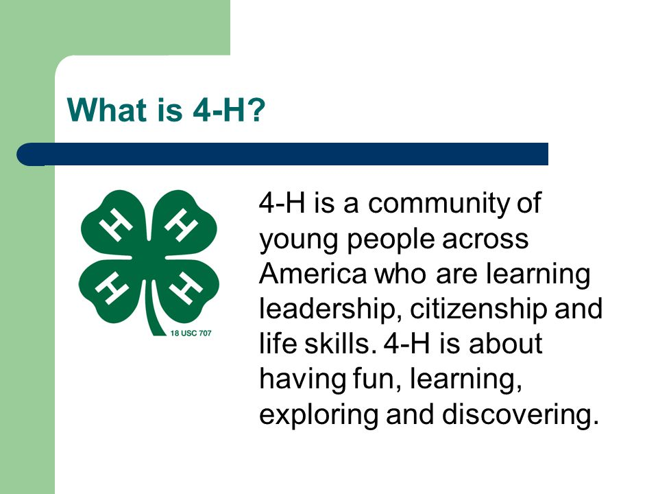 * 07/16/96. What is 4-H