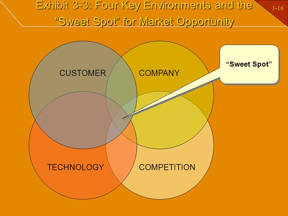 Exhibit 3-3: Four Key Environments and the Sweet Spot for Market Opportunity
