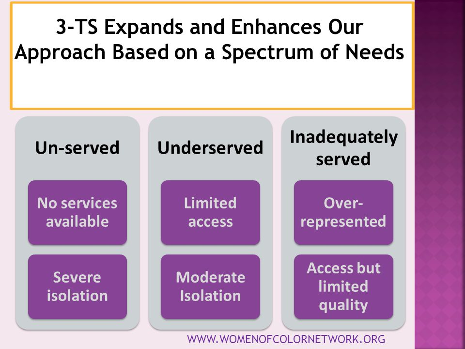 3-TS Expands and Enhances Our Approach Based on a Spectrum of Needs